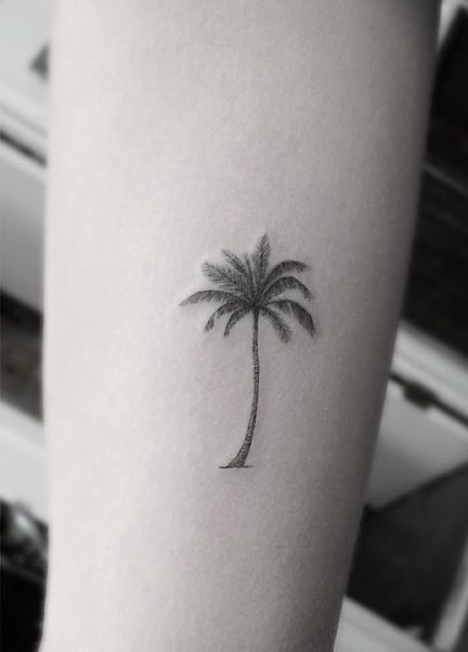palm tree tattoo 2